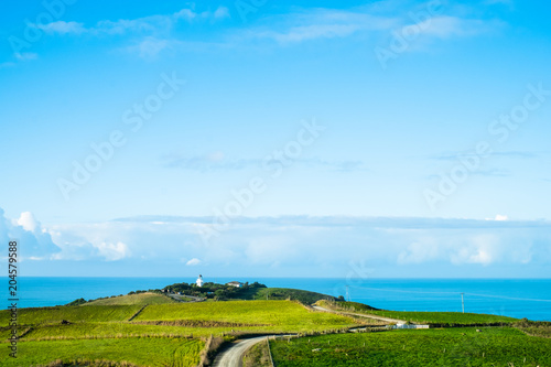 Keuken foto achterwand Pool The stunning landscape of the way in a rural area in New Zealand. Gravel road among green grassland with blue sky.