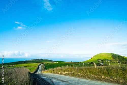 Foto op Aluminium Blauw The stunning landscape of the way in a rural area in New Zealand. Gravel road among green grassland with blue sky.
