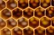 Bee honeycombs texture