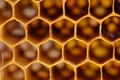 Foto auf Gartenposter Makrofotografie Bee honeycombs texture