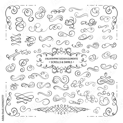 Obraz VECTOR collection of design elements, calligraphic swirls and scrolls for certificate decoration, greeting cards, wedding invitations. Black lines. - fototapety do salonu