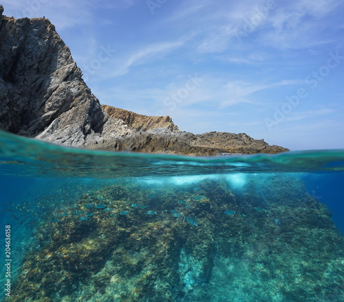 Foto op Plexiglas Kust Rocky sea shore with fish underwater, split view above and below water surface, Mediterranean sea, Marine reserve of Cerbere Banyuls, Pyrenees Orientales, France