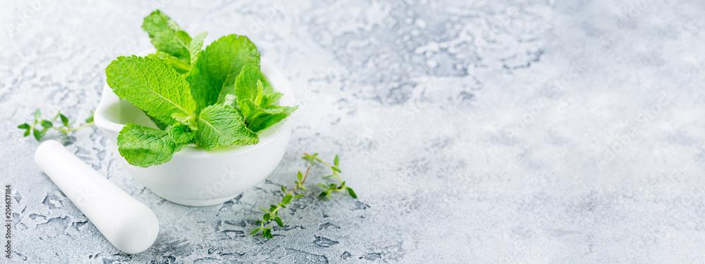 Fototapety, obrazy: Fresh mint leaves. Banner Concept