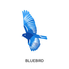 Bluebird Logo Isolated On White Background , Colorful Vector Icon, Brand Sign & Symbol For Your Business