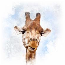 Comical Giraffe Portrait