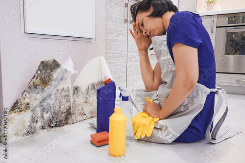 Fotografia, Obraz  Housekeeper's Hand With Glove Cleaning Mold From Wall With Sponge And Spray Bott