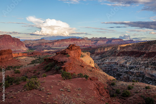 Staande foto Bordeaux Spectacular landscapes of Capitol reef National park in Utah, USA
