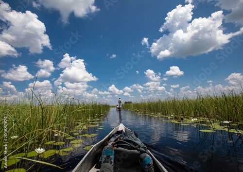 Garden Poster Cathedral Cove Landscape of the Okavango Delta in Botswana during summer period
