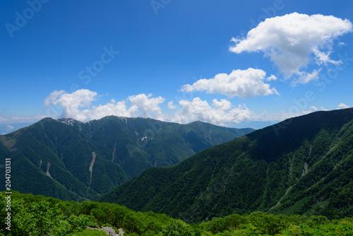 Fototapeta 南アルプス 鳳凰三山 北岳からの眺め obraz na płótnie
