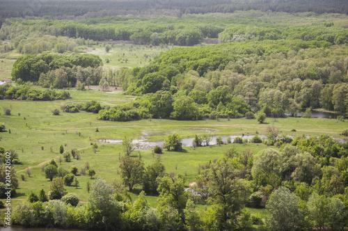 Foto op Canvas Pistache вид на леса и озера с горы