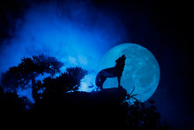 Silhouette Of Howling Wolf Aga...