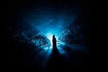 Horror Halloween Decorated Conceptual Image. Alone Girl With The Light In The Forest At Night. Silhouette Of Girl Standing Between Trees With Surreal Light . Selective Focus.