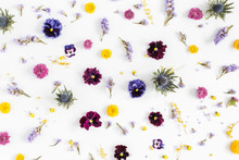 Flowers Composition. Pattern Made Of Colorful Flowers On White Background. Flat Lay, Top View