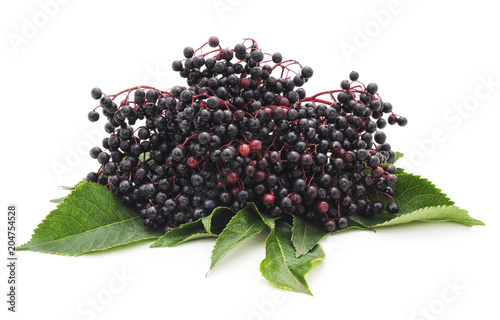 Black elderberry fruit.