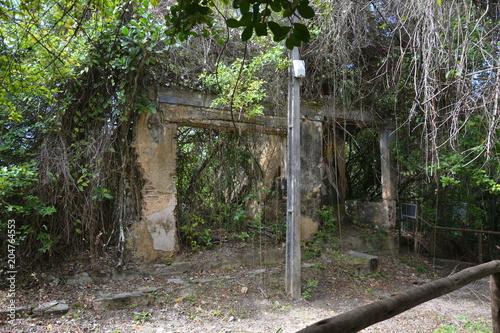 Tuinposter Weg in bos morro de sao paulo - bahia