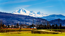 The Snow Covered  Top Of Mount Baker Dominant Over A Fraser Valley Farm Seen From The Matsqui Dyke At The Towns Of Abbotsford And Mission In British Columbia