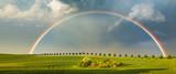 Fototapeta Tęcza - rainbow over the spring field