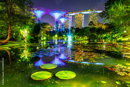 Fotobehang Aziatische Plekken Spectacular skyline of Gardens by the Bay with blue and violet lighting and modern skyscraper reflecting in water lily pond by night. Marina bay area in Central Singapore, Southeast Asia.