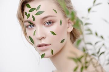 eucalyptus for skincare