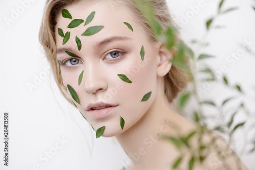 Cuadros en Lienzo eucalyptus for skincare
