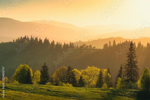 Golden evening in a misty Carpathians #204816707