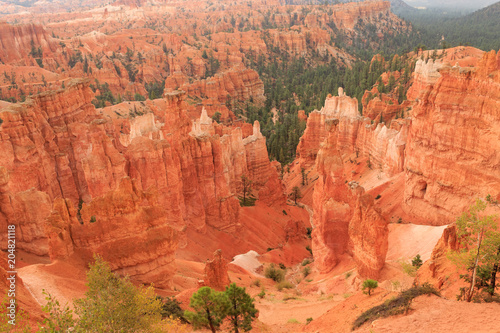 Poster Natuur Park Panorama from Bryce Canyon National Park, USA