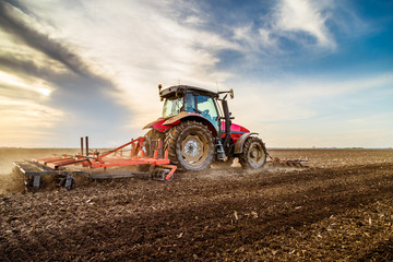 Tractor cultivating field a...