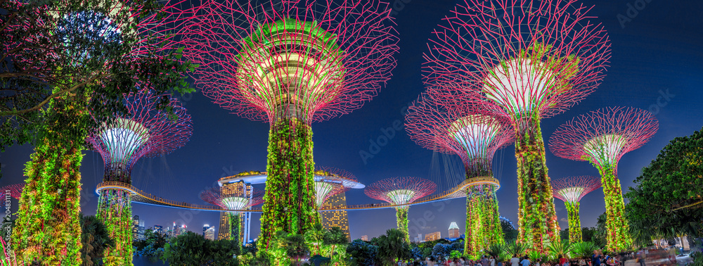 Fototapety, obrazy: Panorama of Gardens by the Bay with colorful lighting at blue hour in Singapore, Southeast Asia. Popular tourist attraction in marina bay area.