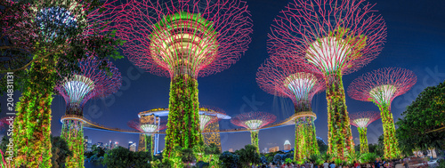 Photo Panorama of Gardens by the Bay with colorful lighting at blue hour in Singapore, Southeast Asia