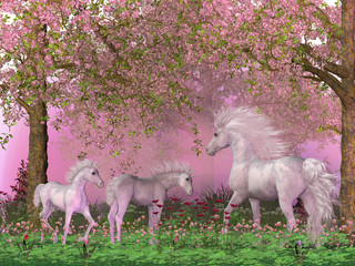 Spring Unicorns - A mother white unicorn frolics with her two foals under spring cherry trees in full blossom.