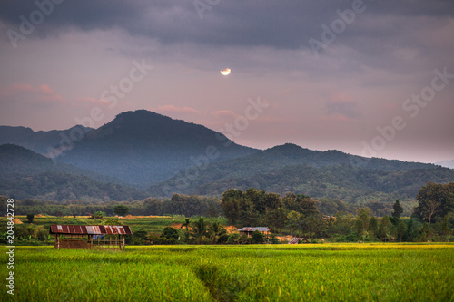 Foto op Canvas Donkergrijs Twilight by the mountain. The beautiful view over the moonlight. The accommodation is beautiful in nature. Rural lifestyle in Pua District, Nan Province, Thailand.