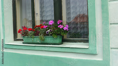 colorful flowers in the green cement pot in front of the window