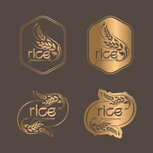 Rice Premium Organic Natural Product