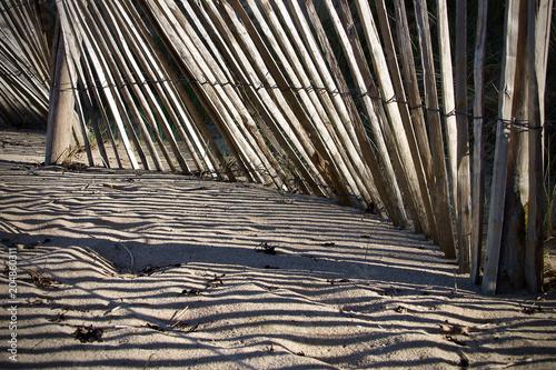 Ombres sur le sable Canvas Print