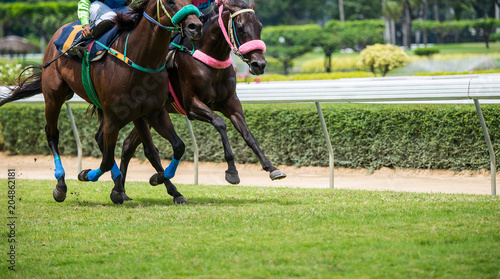 Fotografie, Tablou Horses running past on the racetrack