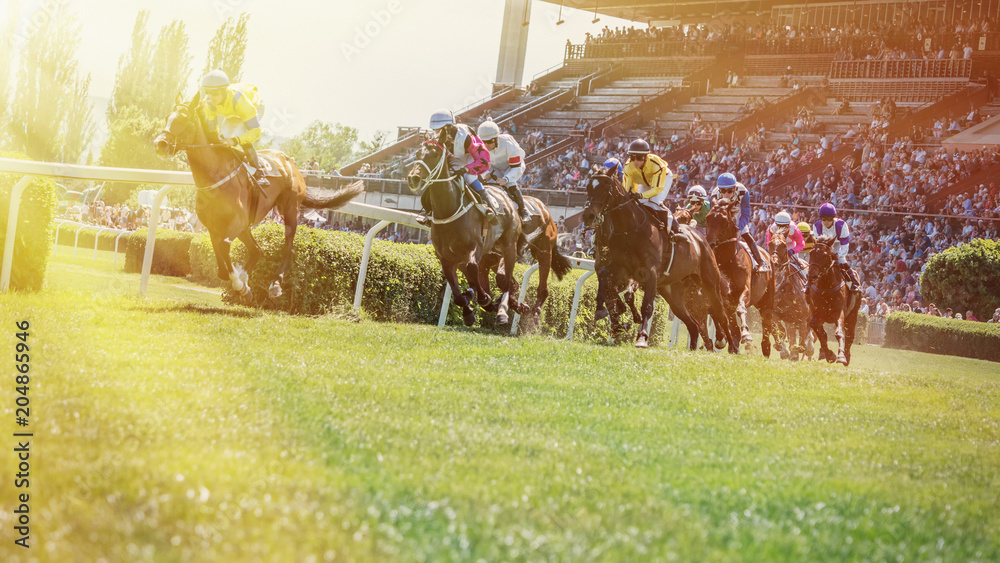 Fototapety, obrazy: Race horses with jockeys on the home straight.