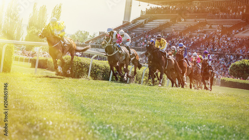 Spoed Foto op Canvas Paarden Race horses with jockeys on the home straight.