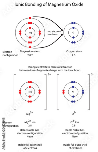 Diagram to show ionic bonding in magnesium oxide MgO Wallpaper Mural