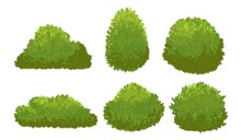 Garden Green Bushes. Cartoon S...