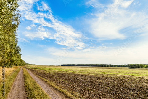 Poster Platteland Countryside landscape. Field with removed harvested crop under the blue sky. Country dirt road in the field. Belgorod region, Russia.