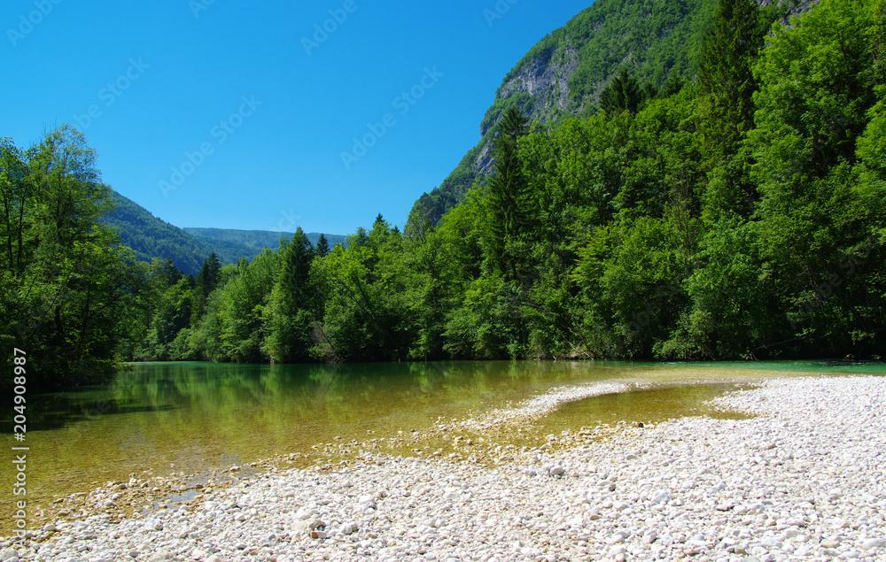 las i rzeka <span>plik: #204908987 | autor: Alekss</span>