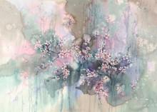 Sakura After The Rain Watercolor