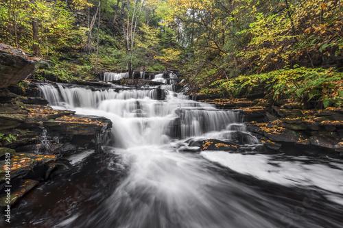 Delaware Falls Downstream - Ricketts Glen, Pennsylvania Canvas-taulu
