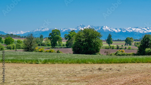 Foto op Aluminium Blauw countryside landscape with Pyrenees mountain range in the background