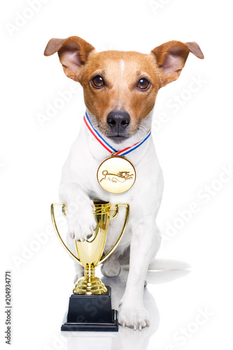 Foto op Plexiglas Crazy dog winner trophy dog