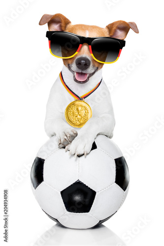 Tuinposter Crazy dog soccer jack russell dog