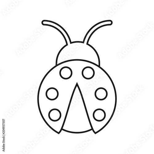 The Ladybug Outline Isolated Coloring Book Vector Stock