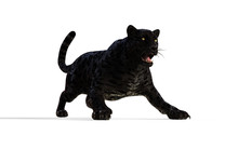 3d Illustration Black Panther ...