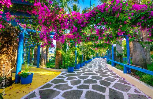 Keuken foto achterwand Bloemen Narrow paved street full of colorful flowers in Sisi, Crete, Greece.