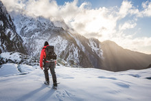 Mountain Guide, Franz Josef Gl...